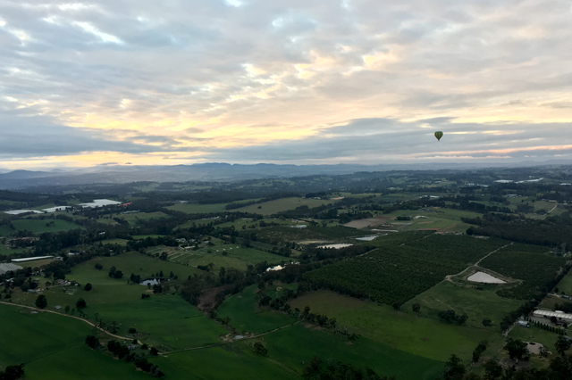 Melbourne's spectacular surrounds – Yarra Valley and Phillip Island