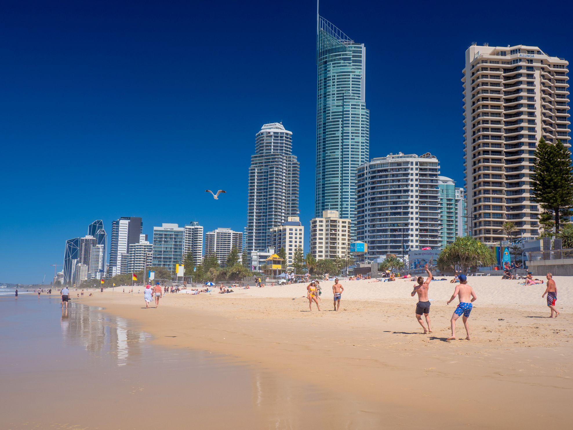 Summer Sizzle in Surfers Paradise